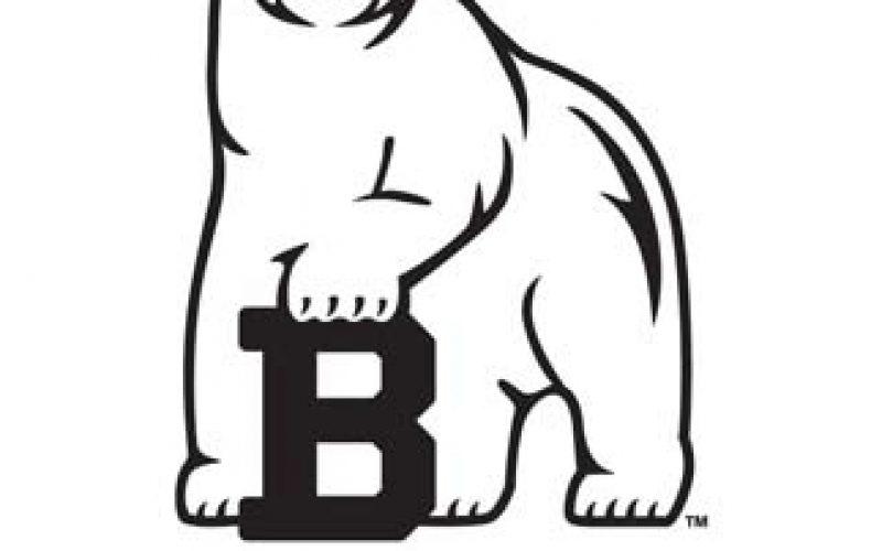 Bowdoin College Bear