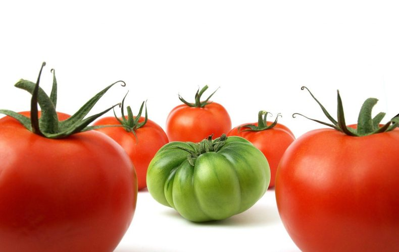 green-tomato-among-red-tomatoes
